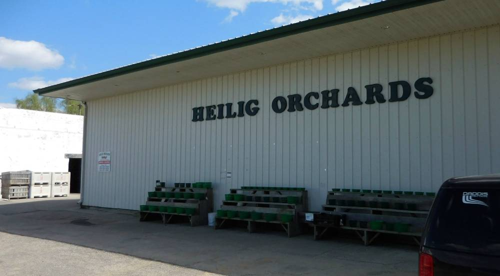 Heilig Orchards